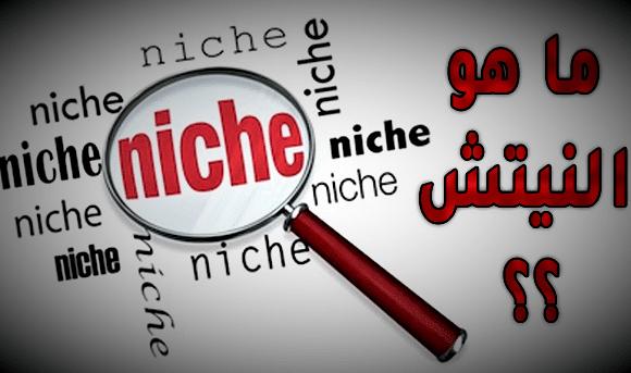 ما-هو-النيتش-niche